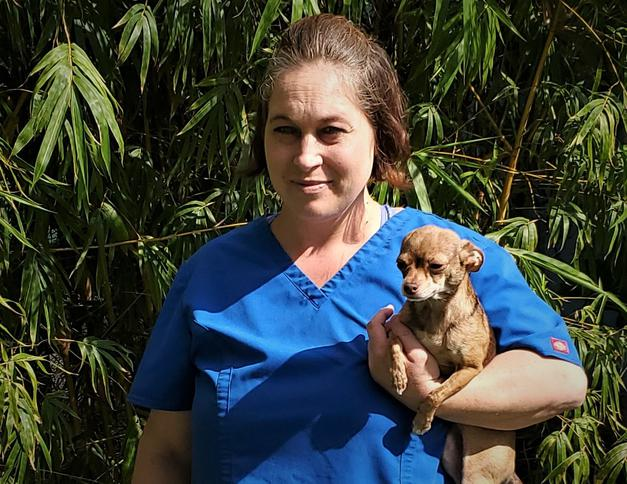 Meet Natasha. She has been with Stuart Animal Hospital for 1 1/2 years. She has lived in South Florida for over 20 years. Natasha entered the veterinary field over 6 years ago not only for her love of animals but for the opportunity to educate people about the health and safety of their pets.  She has become an integral part of our team and we are lucky to have her with us!